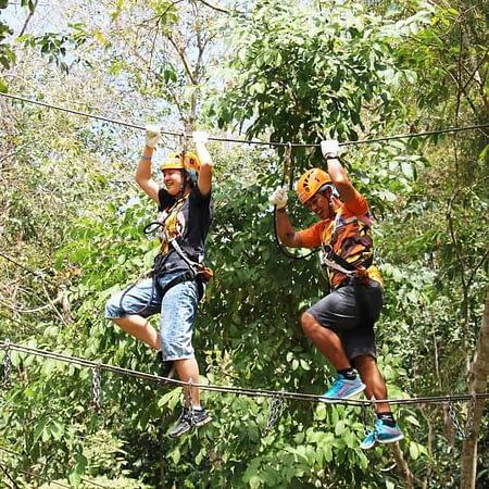 phoenix adventure park chiang mai tour