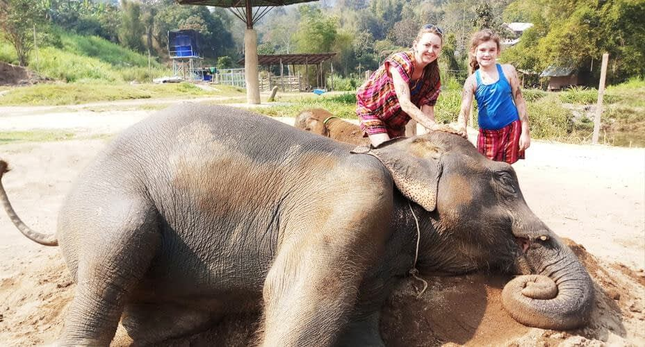 taking care of elephants chiang mai