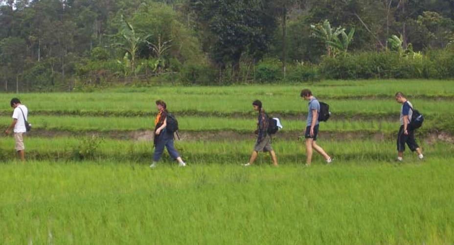 trekking adventure chiang mai to mae wang