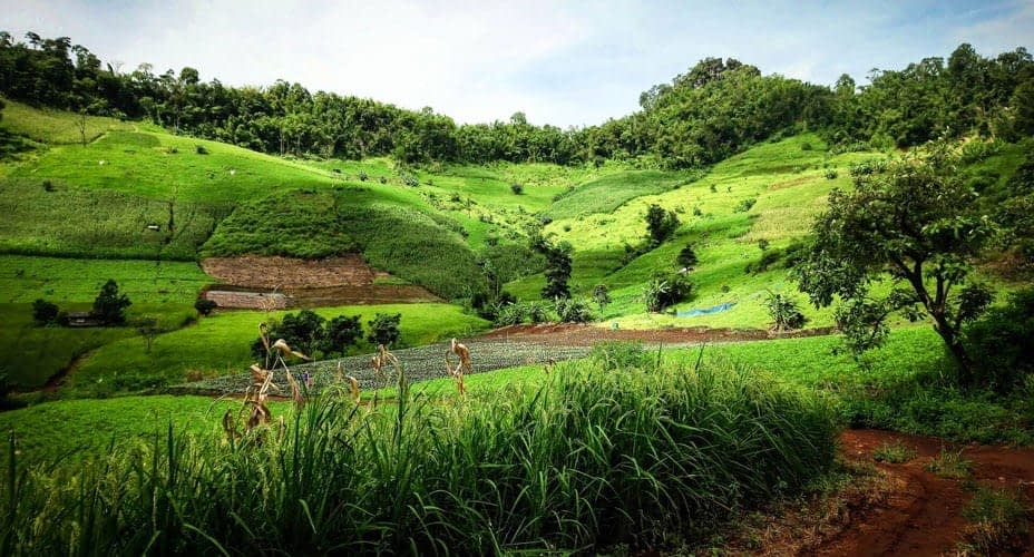 north thailand chiang mai